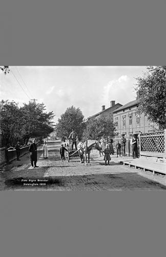 Vaasankatu 1908 – Signe Brander / Helsingin kaupunginmuseo